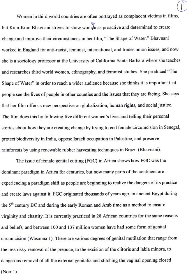 female genital mutilation essay  allnewmxtl essays on female genital mutilation technological argumentative only a few  years ago fgm was considered a